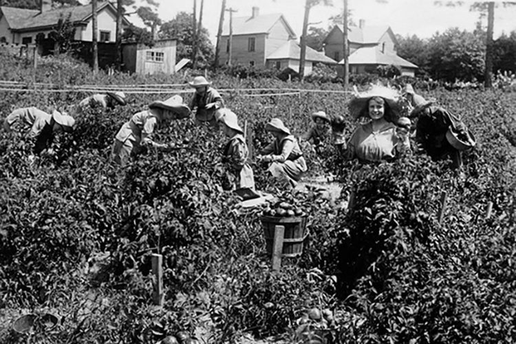 Farmerettes working in a garden