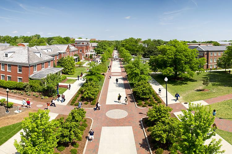 College Avenue, 2011